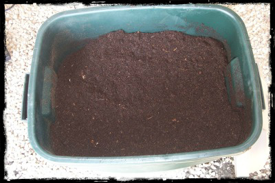 finished compost sm b
